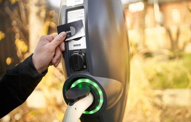 Poland Echo builds green in Widzew
